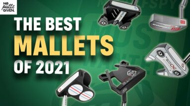 Best Mallet Putters of 2021 🏆