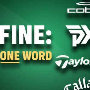 The One Word Survey